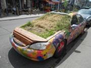 Art installation or car garden? Who knows. @Kensington Market