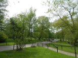 Park on one of Toronto's islands