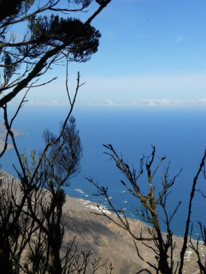View from Anaga Park Tenerife