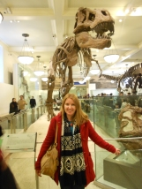 T Rex at the Museum of Natural History