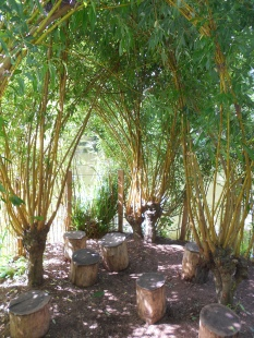 Botanic Garden Nantes